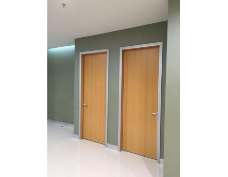 Non-Solid Wood Hospital Style Room Door